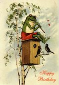 AK171 The Musical Frog